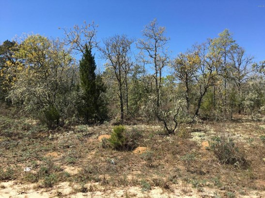 Residential Lots - Alford, FL (photo 4)