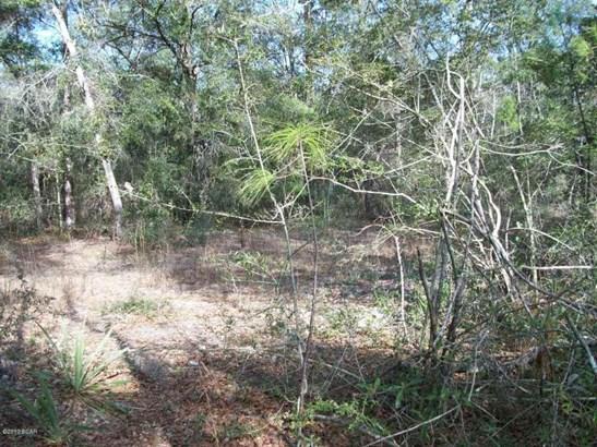 Residential Lots - Defuniak Springs, FL (photo 4)