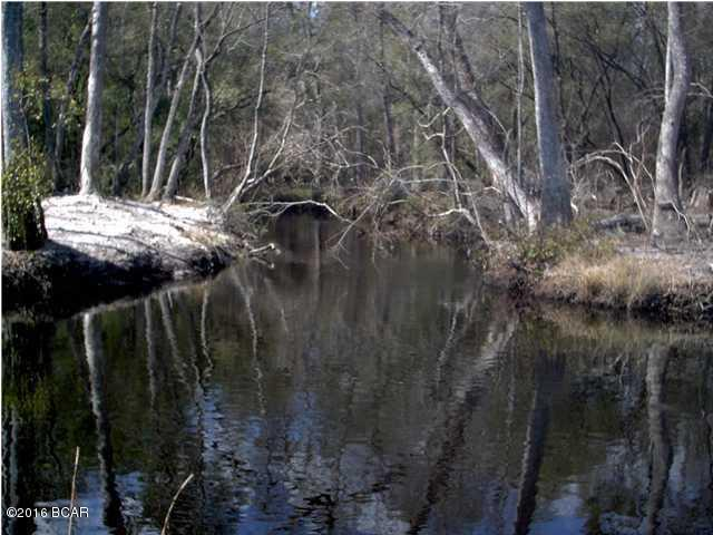Land/Acres - Altha, FL (photo 2)