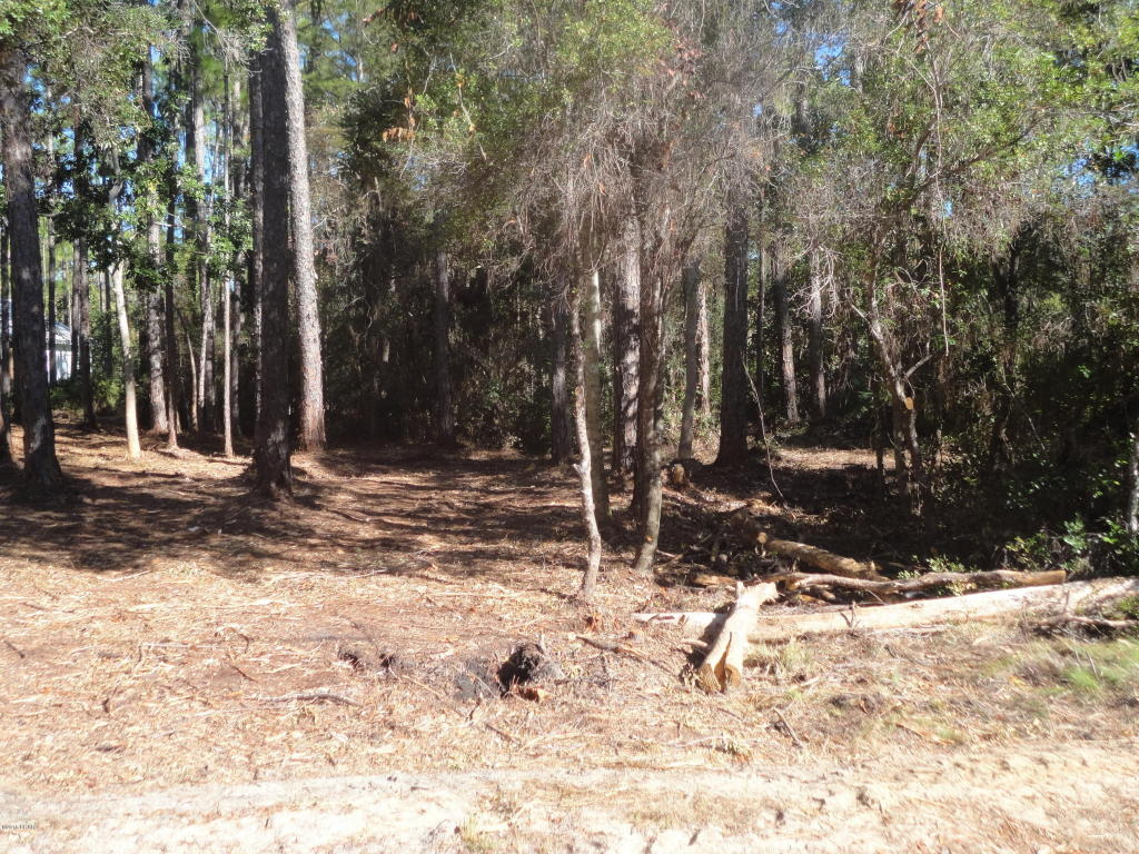 Residential Lots - Point Washington, FL (photo 4)