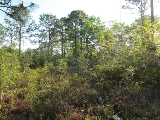 Vacant Land - Southport, FL (photo 3)