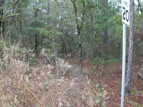 Residential Lots - Fountain, FL (photo 3)