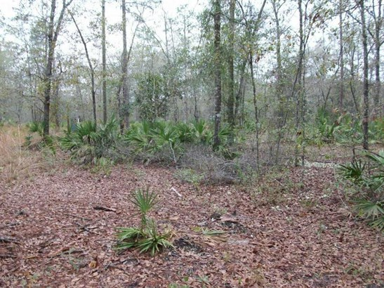 Residential Lots - Fountain, FL (photo 4)