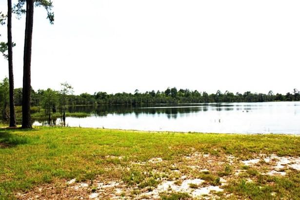 Land/Acres - Altha, FL (photo 1)