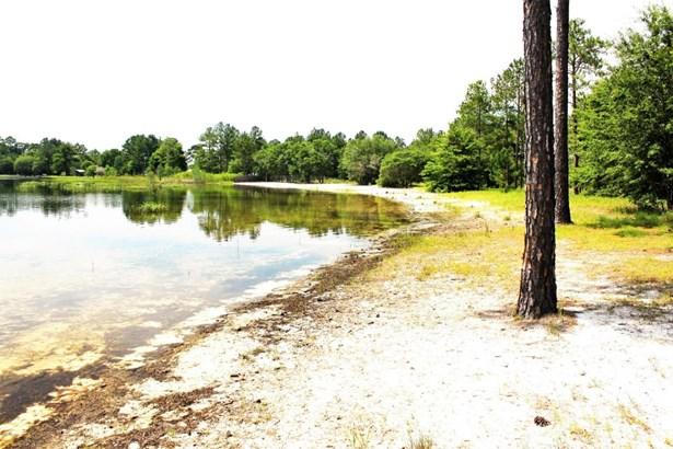 Land/Acres - Altha, FL (photo 3)