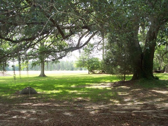 Farm/Ranch - Blountstown, FL (photo 4)