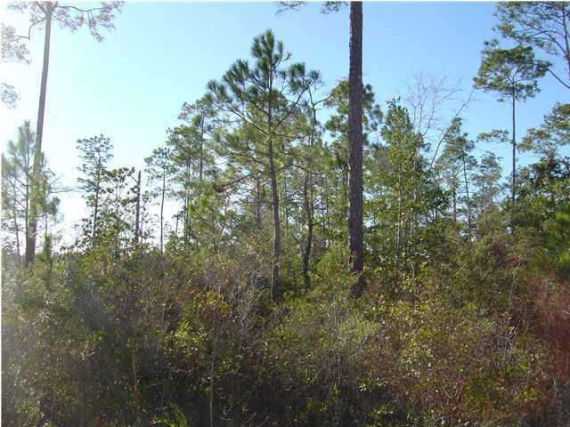 Residential Lots - Southport, FL (photo 3)