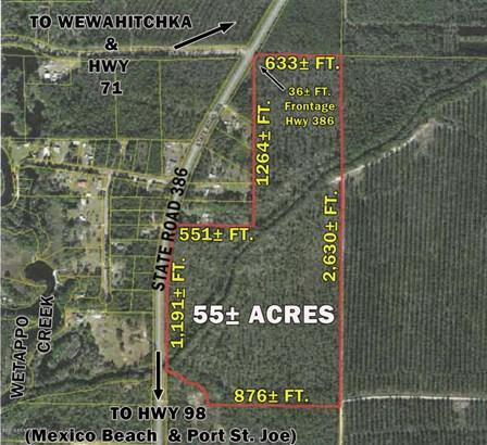 Land/Acres - Wewahitchka, FL (photo 1)