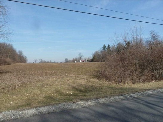 1592 W State Road 47, Arcadia, IN - USA (photo 3)
