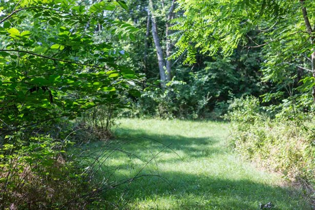 Proposed Detached, Colonial - MOUNT CRAWFORD, VA (photo 4)