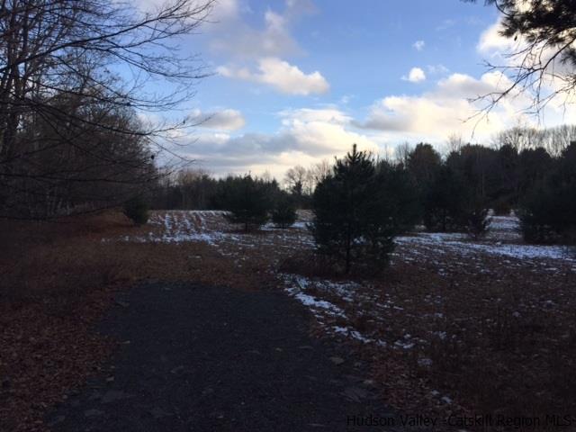 Residential - Stone Ridge, NY (photo 5)