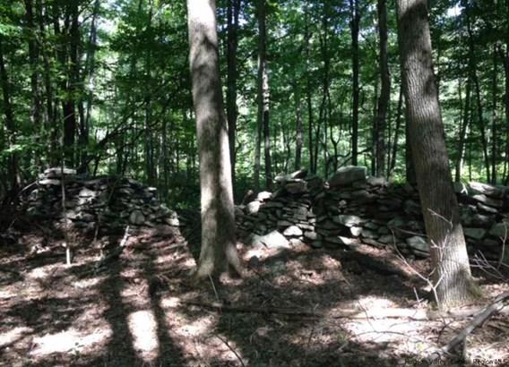 Residential - Stone Ridge, NY (photo 3)