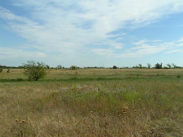 48+ Ac Fm 1743, Honey Grove, TX - USA (photo 2)