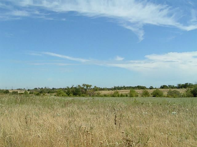 48+ Ac Fm 1743, Honey Grove, TX - USA (photo 4)