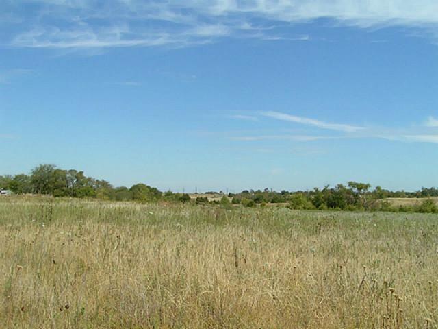 48+ Ac Fm 1743, Honey Grove, TX - USA (photo 5)
