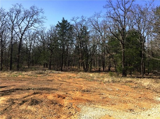 20 Lot Castle Pines Circle, Gordonville, TX - USA (photo 5)