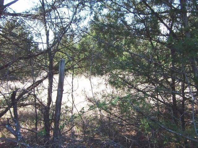 8342b Dripping Springs Road, Denison, TX - USA (photo 3)