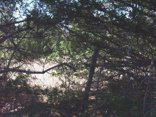 8342b Dripping Springs Road, Denison, TX - USA (photo 4)