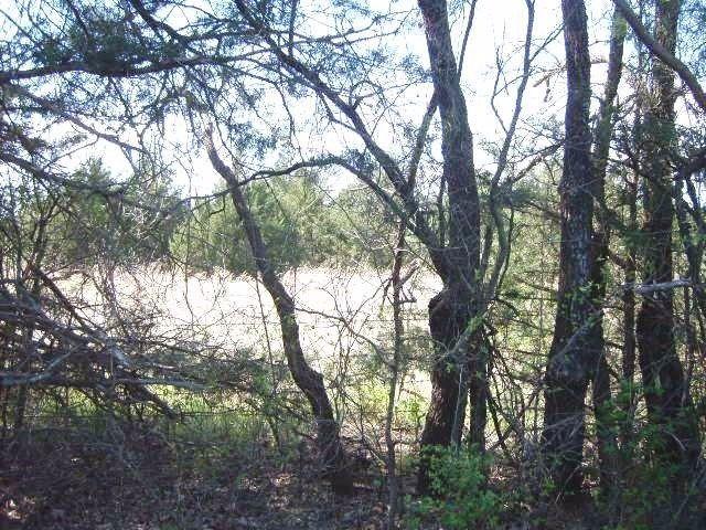 8342b Dripping Springs Road, Denison, TX - USA (photo 5)
