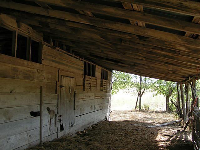 50+ac Fm 1743 A, Honey Grove, TX - USA (photo 4)