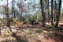 Land/Acreage - Southern Pines, NC (photo 1)