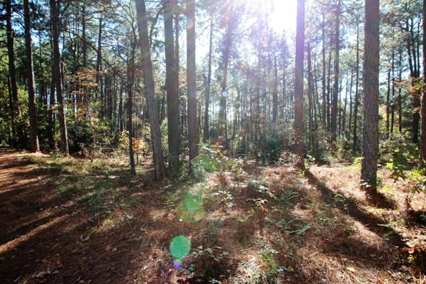 Land/Acreage - Southern Pines, NC (photo 3)