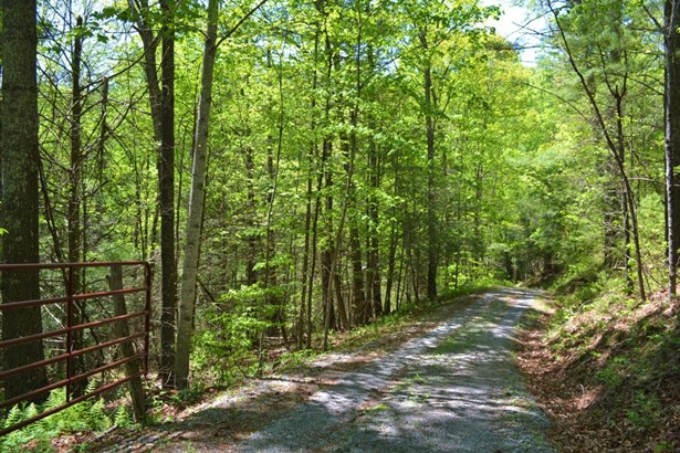1583 Razor Ridge Rd., Troutdale, VA - USA (photo 3)