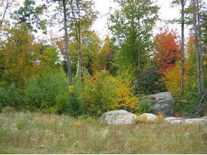 Land - Hancock, NH (photo 1)