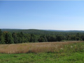 Land - Lyndeborough, NH (photo 1)