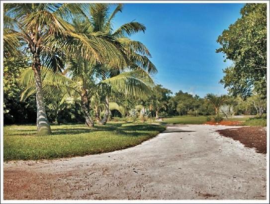 1 Hopkins Island, E Rockland Key, FL - USA (photo 5)