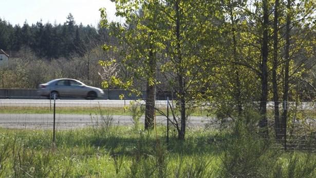 440 Knowles Rd, Toledo, WA - USA (photo 4)