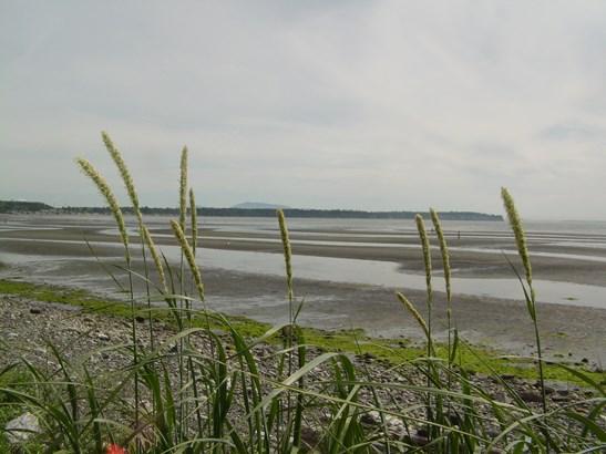 Tour of birch bay (photo 5)