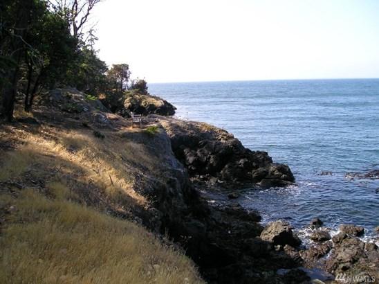 156 Otter Lane, San Juan Island, WA - USA (photo 2)
