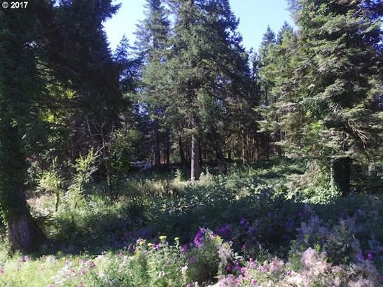 Windsong Ct, Stevenson, WA - USA (photo 3)