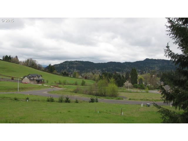 Cottonwood Ln 29, Cottage Grove, OR - USA (photo 4)