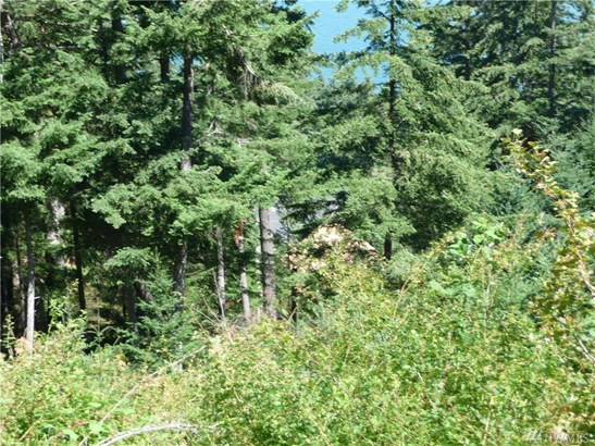 2963 Dogwood Terr, Lummi Island, WA - USA (photo 3)