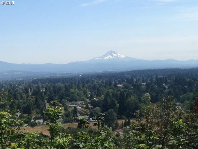 0 Ne Rocky Butte Rd, Portland, OR - USA (photo 1)