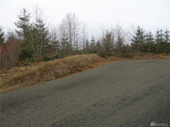 5 Maplevine Lane, Elma, WA - USA (photo 1)