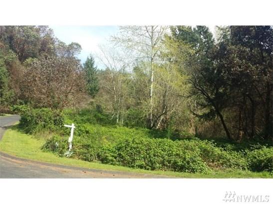 1024 Papago Dr, Fox Island, WA - USA (photo 4)