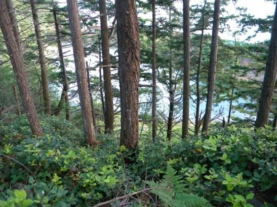 830 Briar, Bellingham, WA - USA (photo 3)