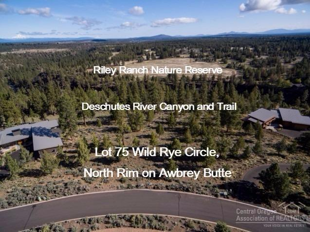 1614 Northwest Wild Rye Circle, Bend, OR - USA (photo 2)