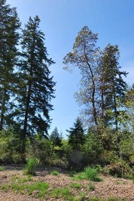 0 E Wild Grape Wy, Grapeview, WA - USA (photo 4)