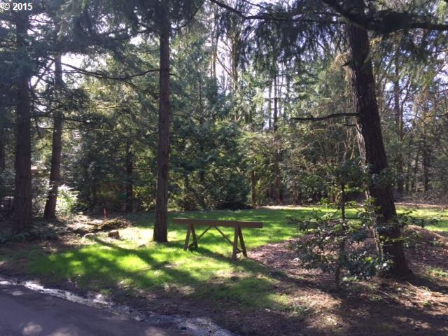 4321 Sw 36th Pl, Portland, OR - USA (photo 4)