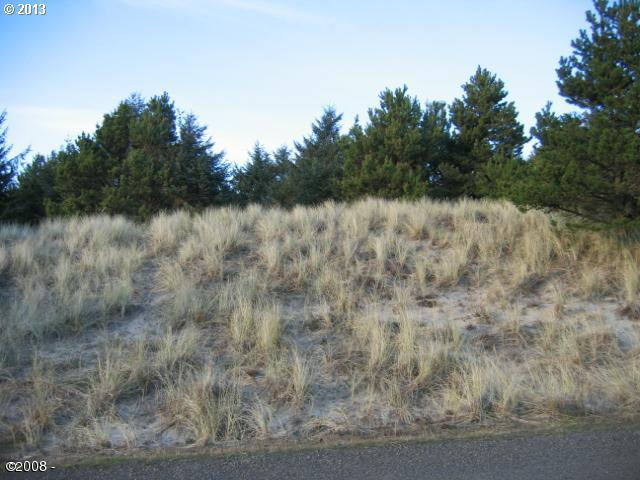 6900 Nestucca Ridge Rd 73, Pacific City, OR - USA (photo 5)