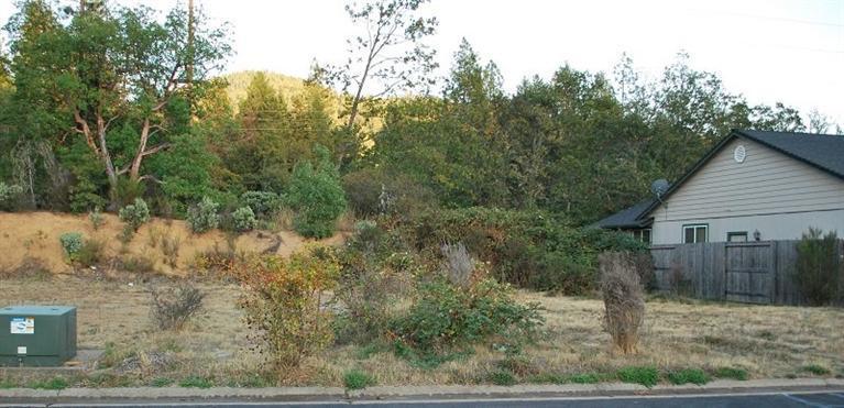 221 Cedar Ridge Drive, Cave Junction, OR - USA (photo 1)