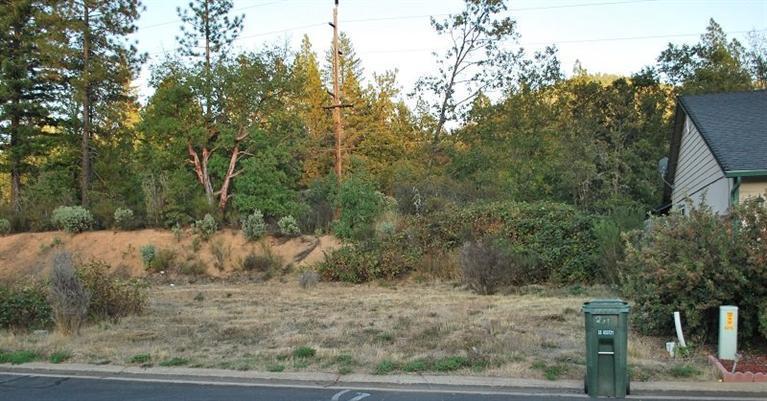 221 Cedar Ridge Drive, Cave Junction, OR - USA (photo 3)