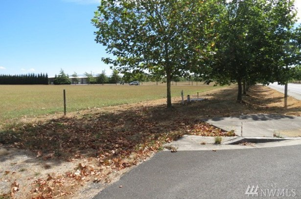 1 W Alderwood Dr, Lynden, WA - USA (photo 4)