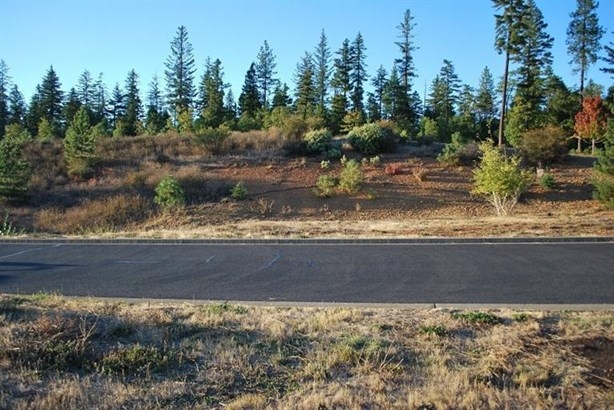 241 Red Cedar Lane, Cave Junction, OR - USA (photo 4)