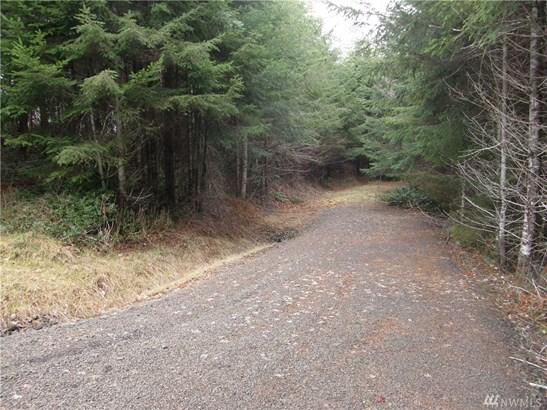 240 Arrowhead Lane, Elma, WA - USA (photo 1)