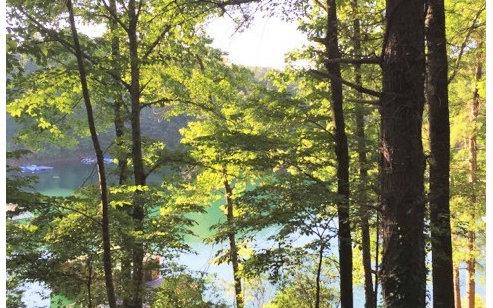Lake Front Lot - Murphy, NC (photo 1)